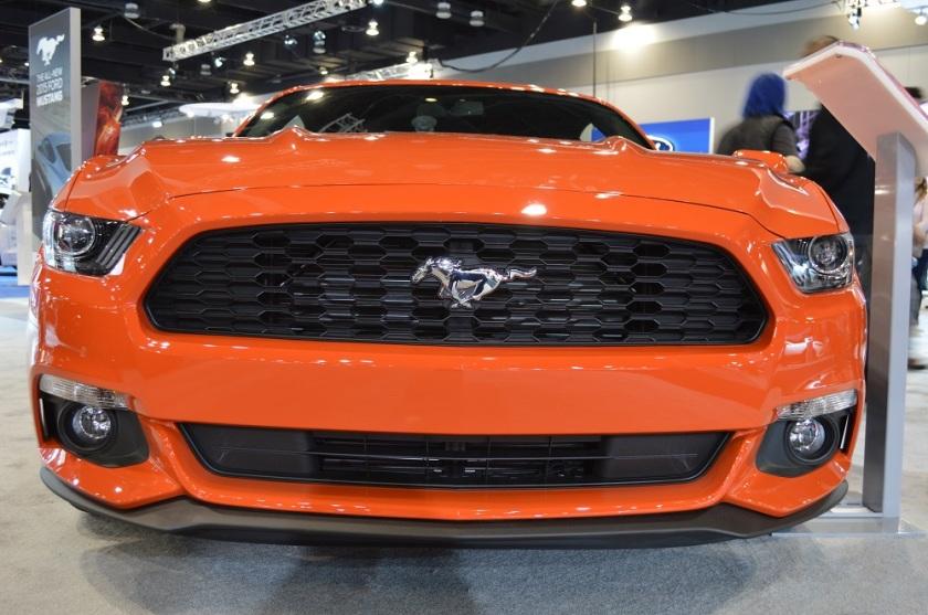 Orange Mustang