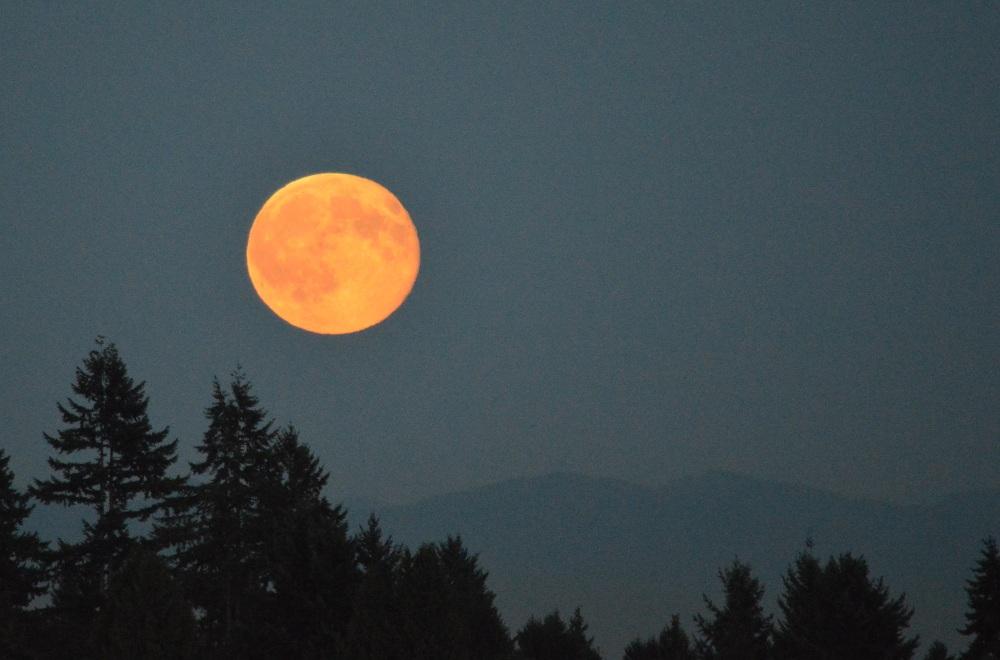 Blue Moon rising (2/4)
