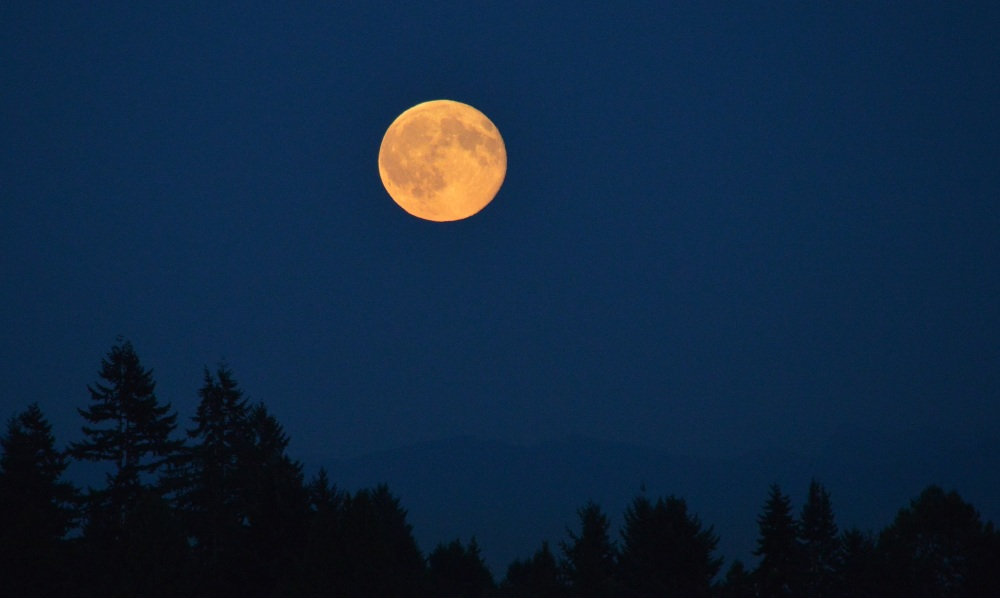 Blue Moon rising (3/4)