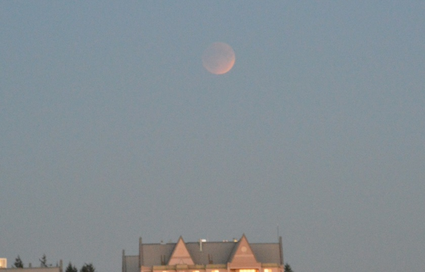 Eclipsed moon rises